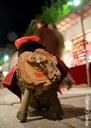 Mataró celebra el Nadal amb activitats per a tothom