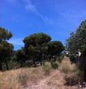 Mataró modifica les franges de protecció contra incendis de les urbanitzacions