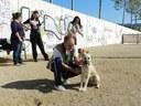 Els propietaris de gossos tenen dos nous espais a Mataró perquè els animals puguin passejar sense anar lligats