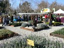 La XXXVI Fira de l'Arbre i la Natura reuneix 160 expositors al parc Central