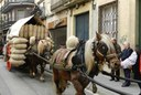 Mataró celebra el proper diumenge els Tres Tombs