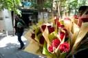 L'Ajuntament recull les sol·licituds per instal·lar parades de roses i llibres per Sant Jordi