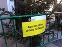 Els arbres de Nadal es poden dipositar als 32 punts de recollida habilitats per l'Ajuntament