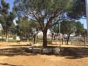 L'Ajuntament acaba l'adequació dels entorns de l'Institut Les Cinc Sénies