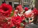 L'Ajuntament obre el termini de recollida de sol·licituds per instal·lar parades de roses i llibres per Sant Jordi