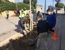 L'Ajuntament replanta més de 1.200 arbres a la ciutat