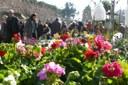 Mataró celebra la 41a edició de la Fira de l'Arbre i la Natura