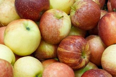 L'Ajuntament prohibeix als comerços exposar productes d'alimentació a la via pública