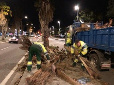 brigada_recollida_restes_arbres.jpg