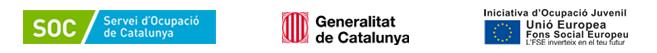L'Ajuntament de Mataró ha rebut una subvenció per a la contractació d'11 joves en situació d'atur inscrits a la Garantia Juvenil. El contracte de treball està efectuat d'acord amb les condicions establertes el l'Ordre TSF/115/2018, de 12 de juliol, cofinançat per la Iniciativa d'Ocupació Juvenil i el Fons Social Europeu 201-2010. Amb un cofinançament de 91,89%.
