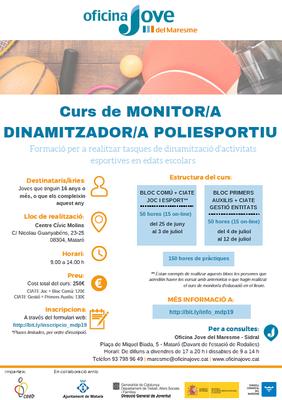 Curs de Monitor/a Dinamitzador/a - Poliesportiu