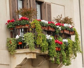 balcons_web.jpg